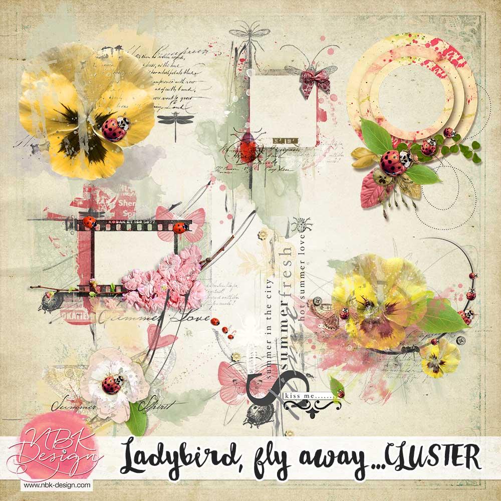 nbk-ladybird-cluster