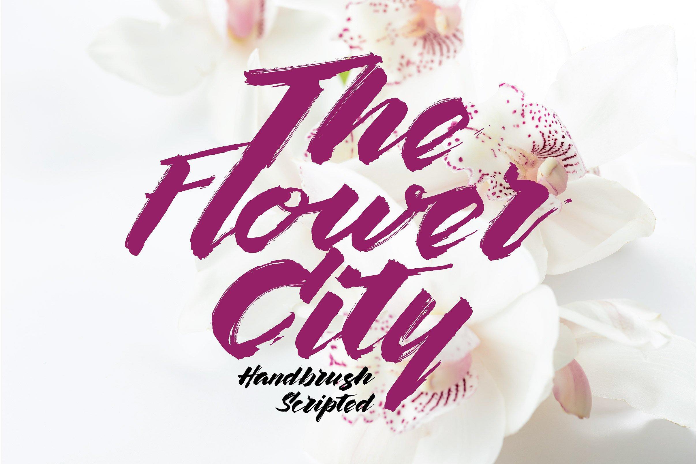 The Flower City ~ Script Fonts on Creative Market