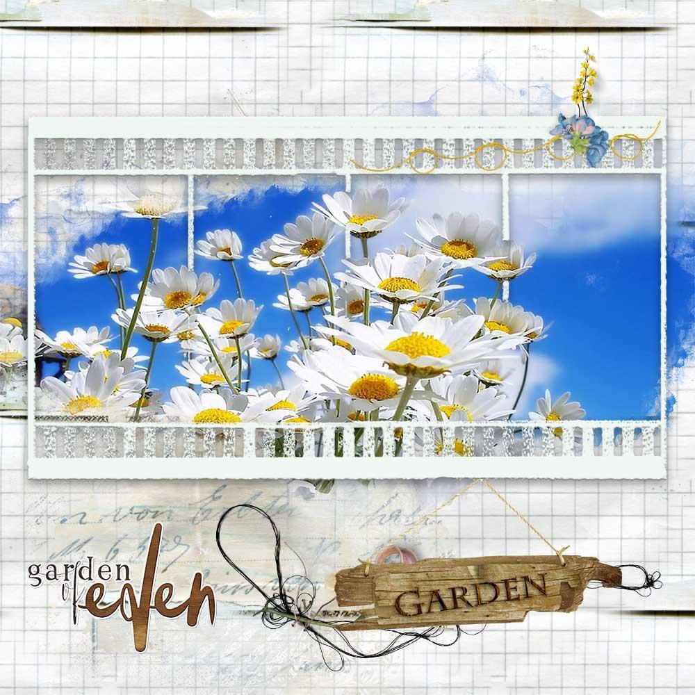Garden of Eden Inspiration from CT Member Trish