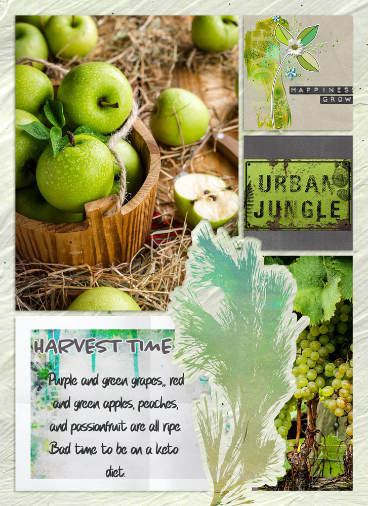 Urban Garden Inspiration with Anne/aka Oldenmeade