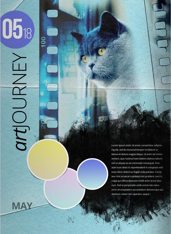 nbk-Delightful-TP-Storybook8