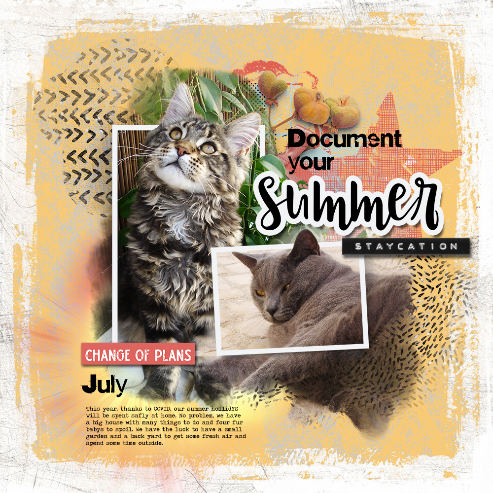 DOCUMENT YOUR SUMMER CHALLENGE JULY BY ANA